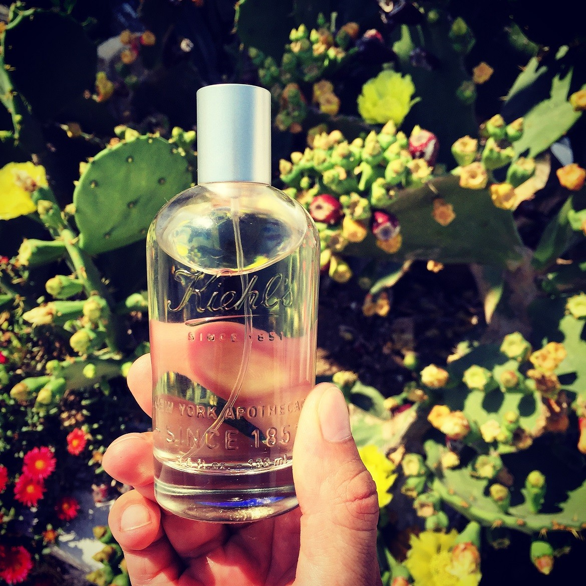 #1 - A stimulating fusion of Fig Leaf & Sage with underlying hints of bergamot, citron & thyme... my summer scent :)