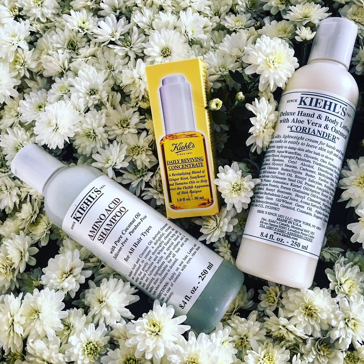 Famous Kiehl's Amino Acid Shampoo / new Daily Reviving Concentrate / silk soft Coriander deluxe hand & body lotion